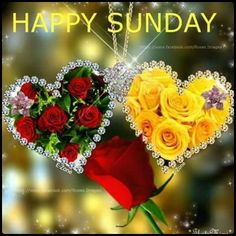 Romantic Good Morning Quotes, Happy Sunday Quotes, Beautiful Morning, Good Morning Flowers Pictures, Flower Pictures, Good Morning Gif Animation, Ocean Quotes, Gif Photo, Good Morning Greetings