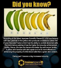 Did you know that the more ripe your banana is, the higher the immune boosting qualities it contains.
