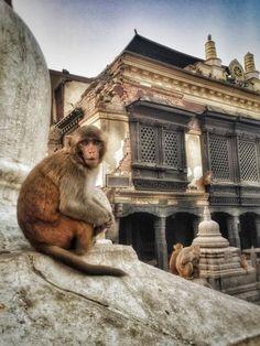 Swayambhunath Temple in Kathmandu, Nepal : On Location: Josh Gates' Pictures - Take 2 : TravelChannel.com