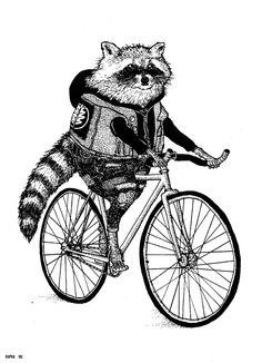 Mapachito en bici