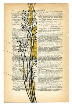 DIY book page art Art Doodle, Altered Book Art, Altered Books Pages, Book Page Art, Art Journal Pages, Art Journals, Art Pages, Dictionary Art, Art Journal Inspiration