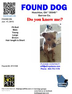 Found Dog - Pit Bull - Hoschton, GA, United States