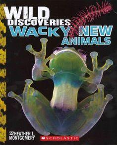 Wild Discoveries: Wacky New Animals by Heather L. Montgomery