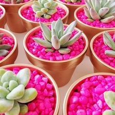 Feeling crafty? Accessorize your home or office space with a fun pop of color! We're loving these adorable succulents made by @jenlaurengrant.