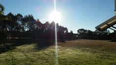 Sunlight morning