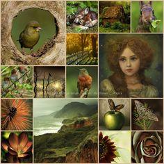 '' Green & Brown '' ... by Reyhan Seran Dursun