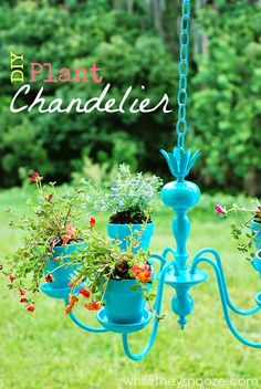 Turquoise chandelier with some plants