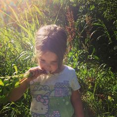 NOURISH … after the harvest |a new local kansas city organization harvesting food for the hungry