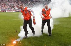 Euro 2012 stewards