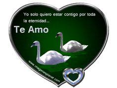 Imagenes animadas de cisnes en agua y corazon con frases de amor
