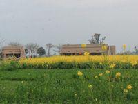 Punjabiyat, Saidowal–Gunopur, Punjab, India