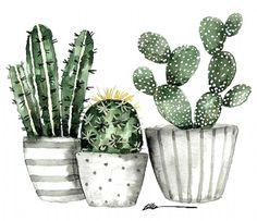 Cactus Painting, Plant Painting, Cactus Art, Plant Art, Cactus Decor, Watercolor Succulents, Watercolor Cactus, Watercolor Paintings, Succulents Art