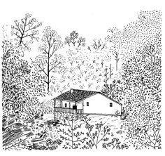 1000drawings - House in the woods by Becca Stadtlander      ...