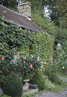 Ivy Covered Cottage with chimney lantern rose bushes! there's nothing wrong with this lovely, fairy-tale picture :) Cozy Cottage, Cottage Style, Storybook Homes, British Countryside, Ivy House, Deep Purple, Garden Design, Facade, Beautiful Places