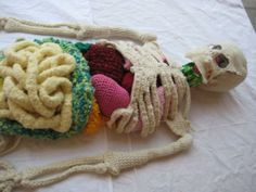 Knitted Skeleton and other knitted science bits