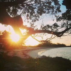 A perfect evening at #smallhopebaylodge #andros #island #Bahamas