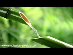 Best Ever Chinese Bamboo Flute Zen Relaxing Music Playlist- Over 2500 Likes for Meditation Spa Yoga - YouTube