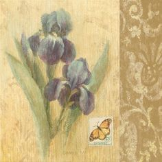 Danhui Най - Ботанический Бабочка IV - Репродукция - Глобальная Галерея