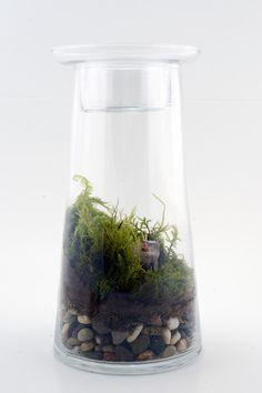 Zen Garden DIY Kit.