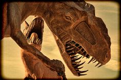 Tyrannosaurus Rex Duel - photograph by Douglas MooreZart #photography #fineart #desertphotography #sculptures #douglasmoorezart #anzaborrego #tyrannosaurusrex