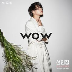 Wow from A.C.E