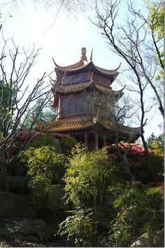 Amazing place ⛩ This is. Hall of Clear Shade in the beautiful Chinese Garden of Friendship, Darling Harbour, Sydney Darling Harbour, Chinese Garden, Great Barrier Reef, South Wales, Beautiful Beaches, Places To See, New Zealand, The Good Place, Sydney