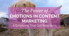 The Power of Emotions in Content Marketing and 6 Emotions That Get Reactions https://blog.thesocialms.com/power-emotions-in-content-marketing-reactions/?utm_campaign=crowdfire&utm_content=crowdfire&utm_medium=social&utm_source=pinterest