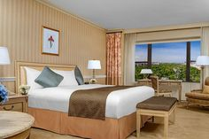 Book Park Lane Hotel, New York City on TripAdvisor: See 4,212 traveller reviews, 1,567 candid photos, and great deals for Park Lane Hotel, ranked #260 of 475 hotels in New York City and rated 4 of 5 at TripAdvisor.