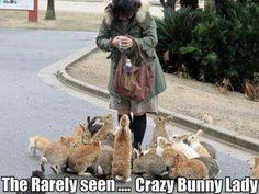 Crazy bunny lady?