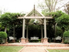 Arbor and Bench Swings with vines trained on the structure.