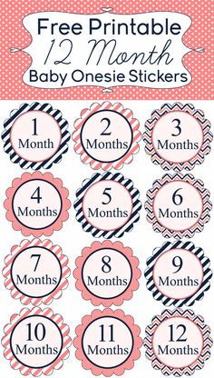 + ideas about Baby Month Stickers on Pinterest | Monthly Baby, Baby ...