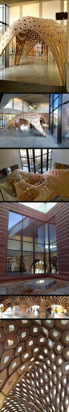 Catalyst Hexshell – Corrugated Cardboard