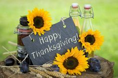Happy Thanksgiving P Happy Thanksgiving Pictures Free Free Thanksgiving Pictures Thanksgiving Pictures Free, Happy Thanksgiving Wallpaper, Thanksgiving Chalkboard, Thanksgiving Wishes, Sunflowers And Daisies, Sharing Economy, Budget Travel, Cheap Travel, Are You Happy