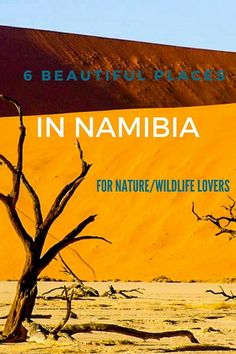 6 Beautiful Places to Visit in Namibia for the Best Nature!