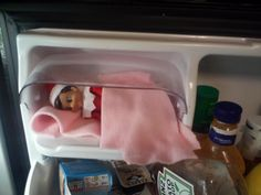 Elf on the Shelf, Carl loves the really cold weather of the North Pole. Sleeping in the butter dish reminded him of home. #elfontheshelf