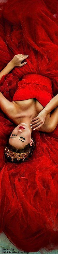 Rosamaria G Frangini |  ColorDesire Red