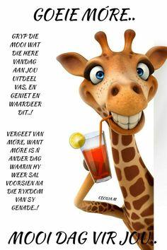 Goeie More, Afrikaans, Scooby Doo, Good Morning, Van, Words, Character, Diamond, Bom Dia