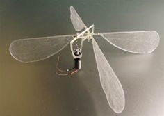 Using printers, scientists can readily experiment with wings mimicking those of real insects or virtually any other shape to learn more about this complex form of flight. Such research could lead to flying micro-robots for espionage, search-and-rescue 3d Printing News, 3d Printing Technology, Cool Technology, Drones, Arte Robot, 3d Printed Objects, 3d Figures, New Inventions, 3d Prints