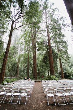 71 Best Low Budget Weddings Diy Images Low Budget Wedding