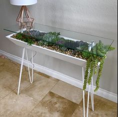 Nobody ever said you couldn't have a mini garden inside your coffee table, right? Table Cafe, Diy Table, House Plants Decor, Plant Decor, Coffee Table Planter, Coffee Tables, Hanging Patio Lights, Plantas Indoor, Wood Display Stand