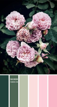 Color Inspiration : Green and Pink – Color Palette #33 1 - Fab Mood | Wedding Colours, Wedding Themes, Wedding colour palettes Color Schemes Colour Palettes, Orange Color Palettes, Red Colour Palette, Blue Palette, Light Pink Color, Teal Colors, Sage Color, Light Blue, Pink Green Wedding