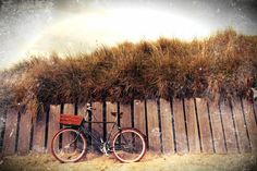 To The Beach bike