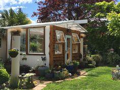 My windows greenhouse
