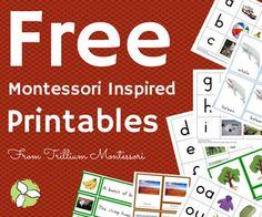 Trillium Montessori Free Montessori Inspired Printables