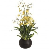 Gardner's Orchids available at http://www.seniorfurnishings.com/