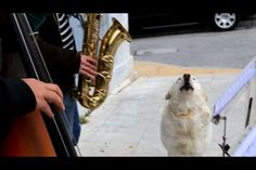 Jazz à Patiss
