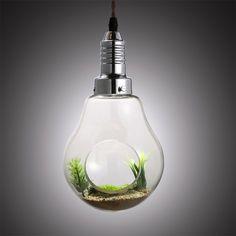 Clear Glass Bulb Shape Plant Holder Single Light Mini Pendant Lamp