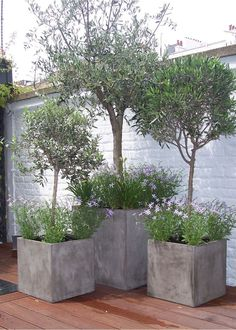Image result for concrete planter for tree