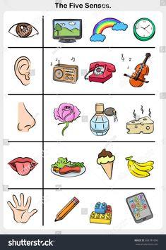 five senses - hand, lips, eye, ear, nose. object of 5 senses Five Senses Preschool, Senses Activities, Preschool Writing, Preschool Learning Activities, Preschool Worksheets, Preschool Activities, Teaching Kids, Five Senses Worksheet, Body Parts Preschool