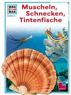 Was ist was, Band 051: Muscheln, Schnecken, Tintenfische ... https://www.amazon.de/dp/378862910X/ref=cm_sw_r_pi_dp_x_glkhybN2FTHMB